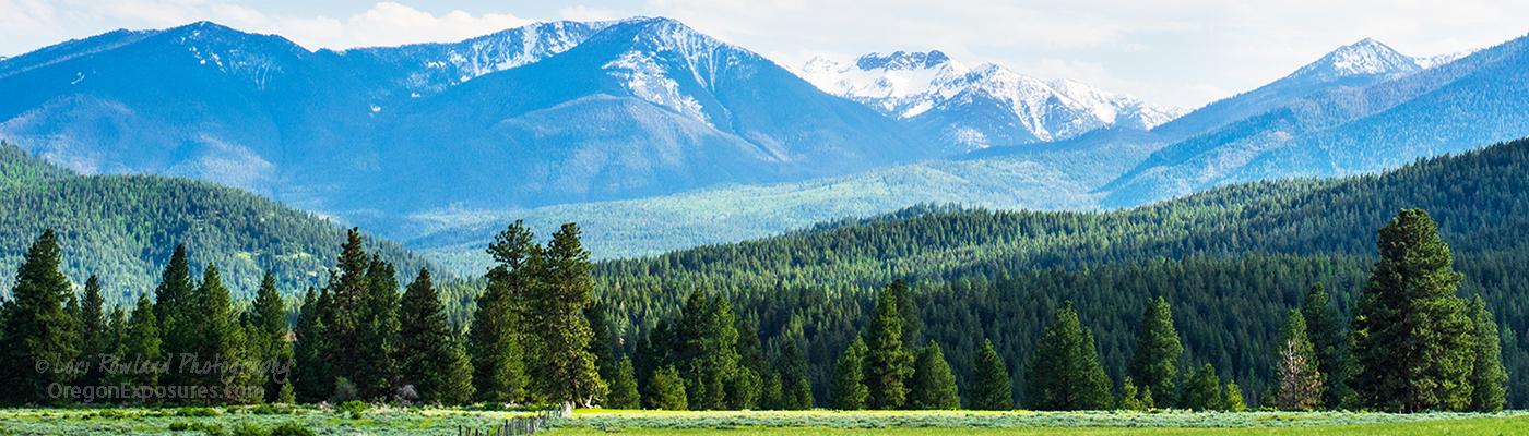 The Elkhorn Mountains in Springtime