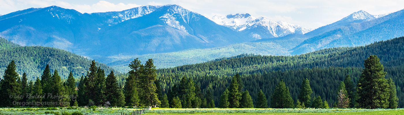 The Elkhorn Mountains in Springtime