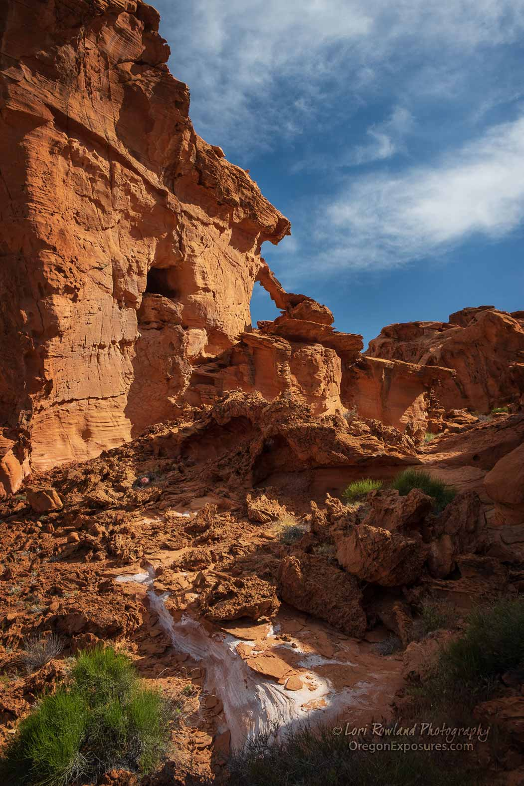Gold Butte Arch