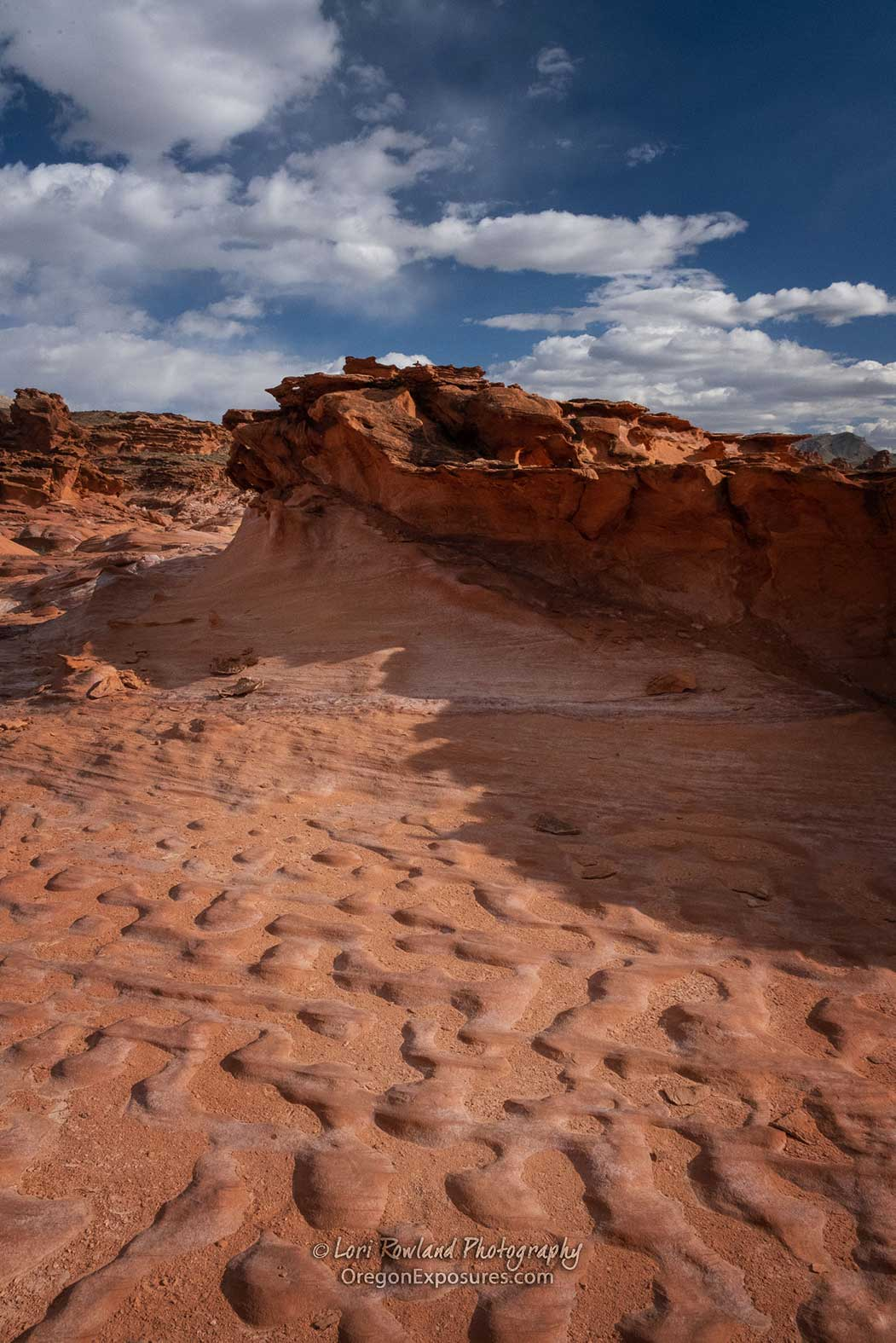 Interesting wind patterns look just like cobblestones in Gold Butte National Monument in Nevada.