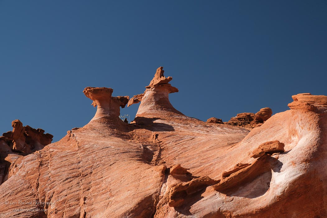 Two goblins I call Which-Way and That-Way in Gold Butte National Monument, Nevada.