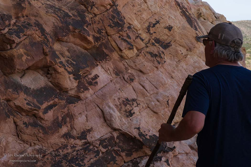 Looking for Petroglyphs in Gold Butte National Monument in Nevada.