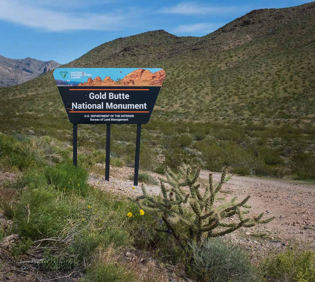 Gold Butte National Monument Sign