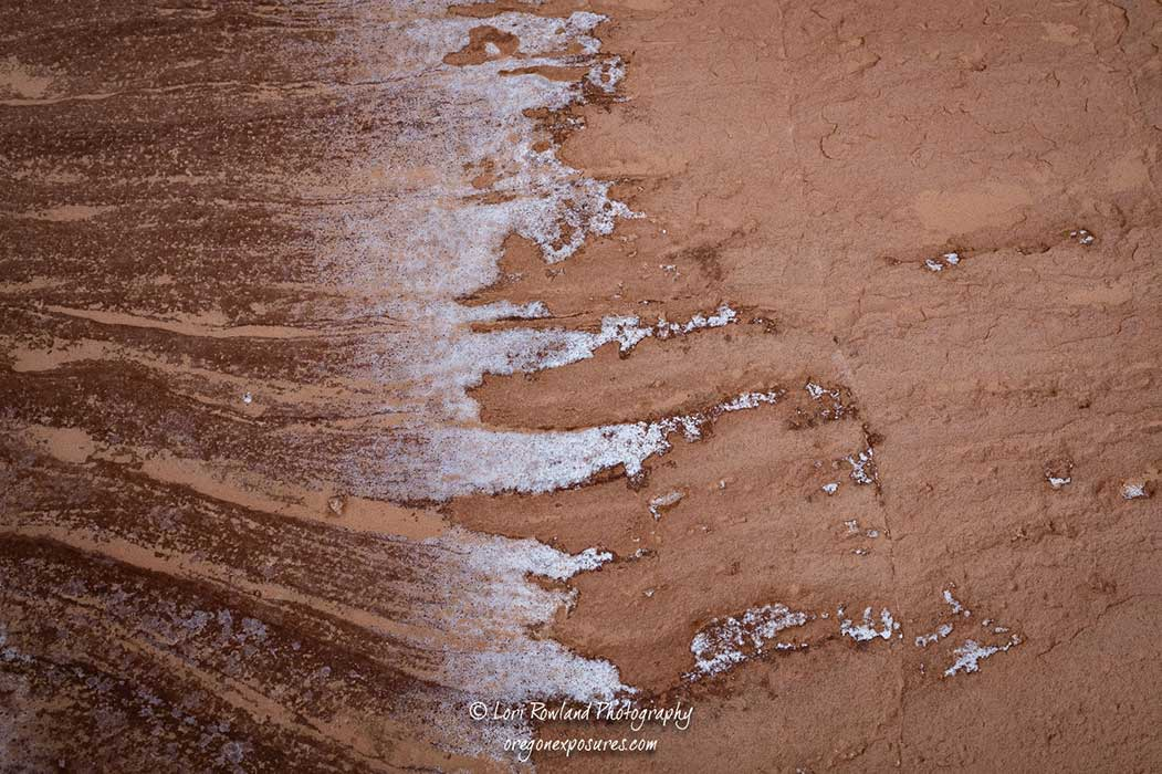 Interesting patterns are plentiful in the eroded rock at Gold Butte National Monument in Nevada.