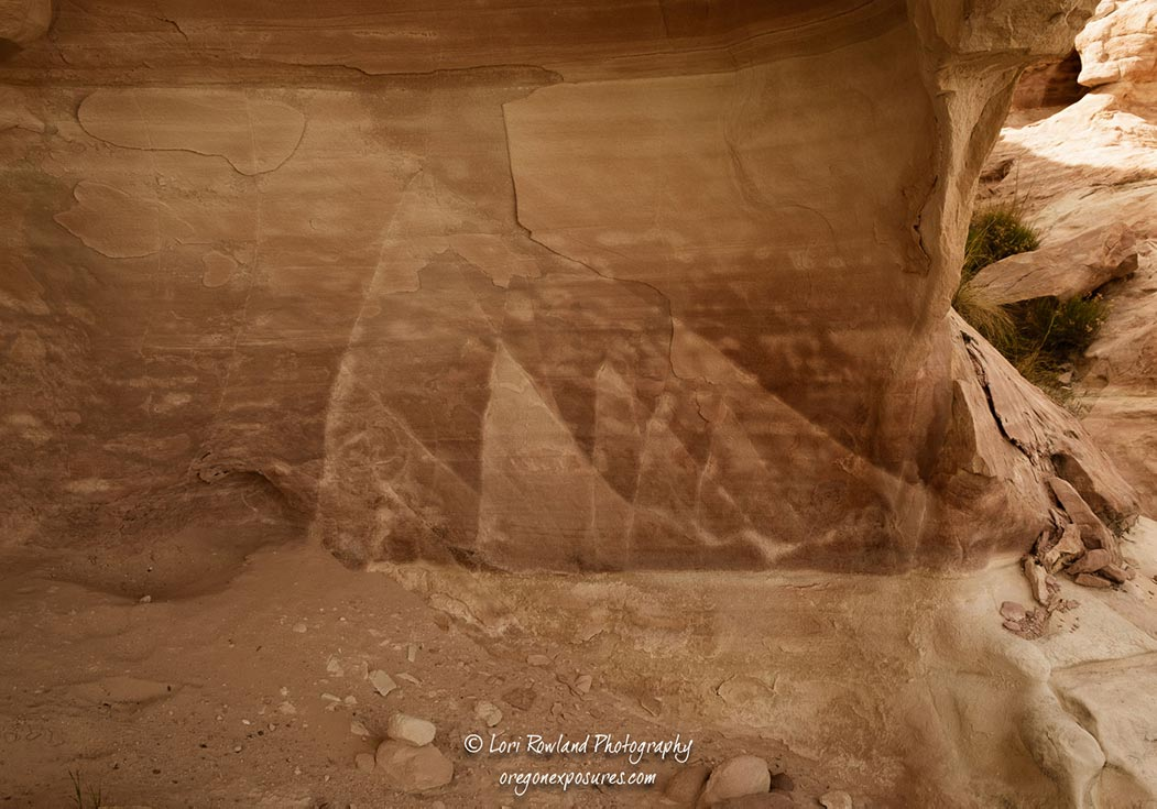 Natural rock patterns at Gold Butte NM.