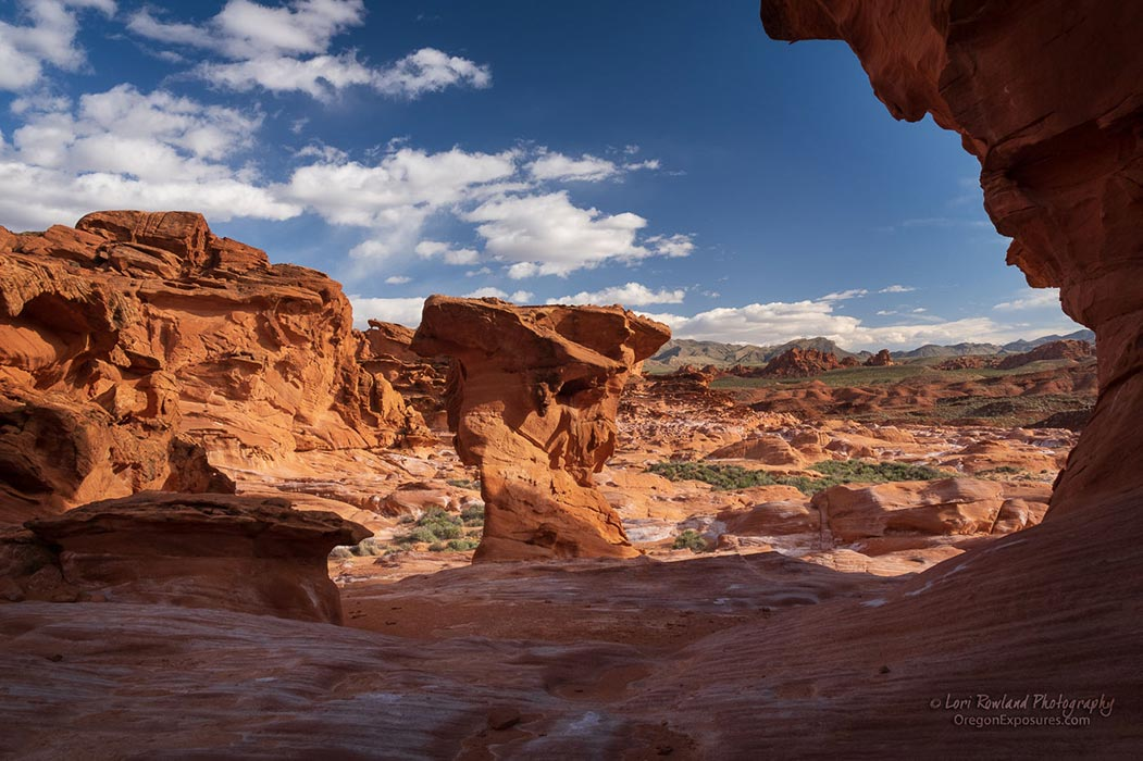 A beautiful desert view in Gold Butte National Monument, Nevada.
