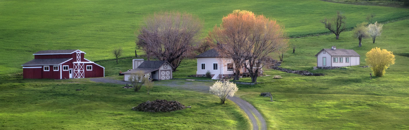 A Spring morning on a farm in Union County, Oregon