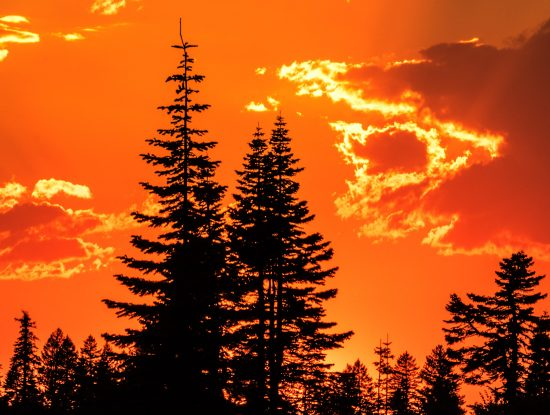 2020 Scenic Oregon Calendar Images